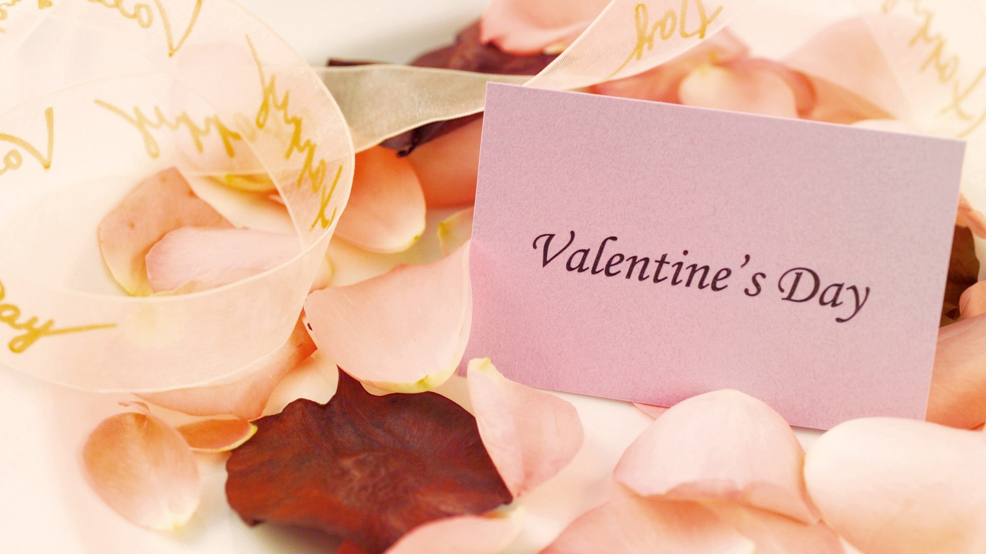 10 best valentine u0027s day pc wallpapers to make the mood romantic