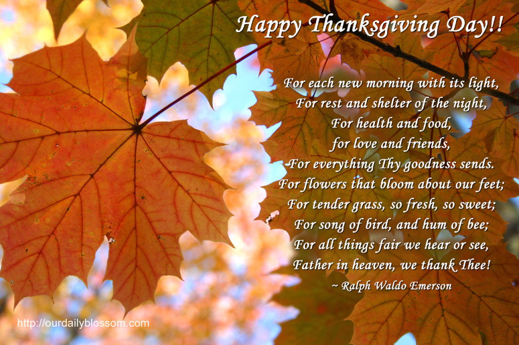 happy thanksgiving greeting cards  science and technology, Greeting card