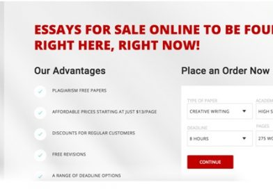 EssayForSale.net: Essays for Sale to Be the College Hero