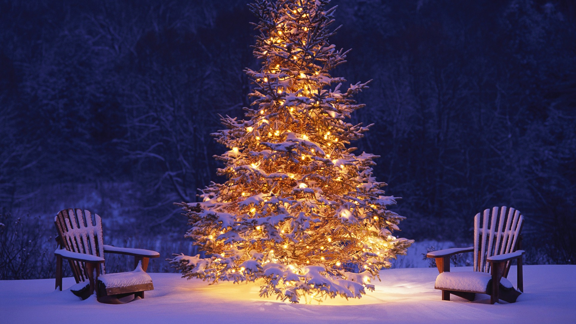 Hd Christmas Wallpaper.Merry Christmas Hd Wallpapers Image Greetings Free