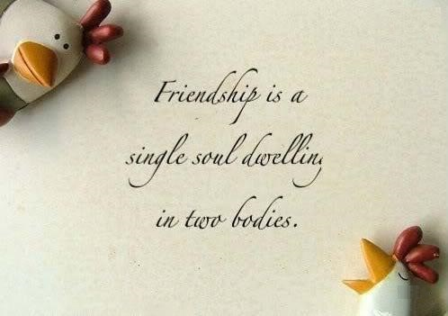 Happy Friendship Day Facebook Status & Messages