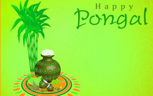 Happy Pongal Wallpapers Images