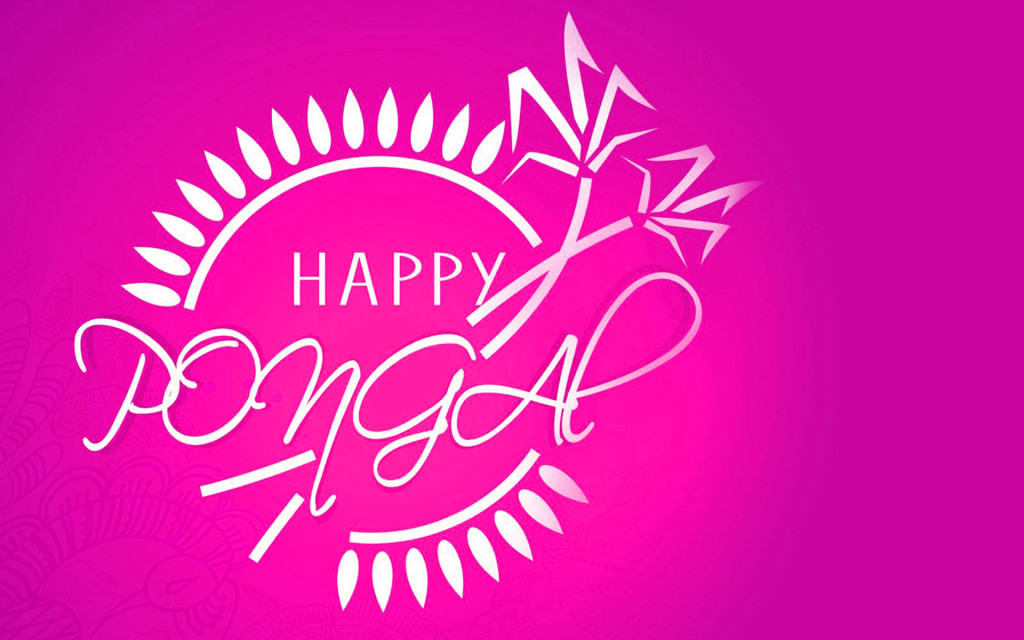 Happy Pongal 2016