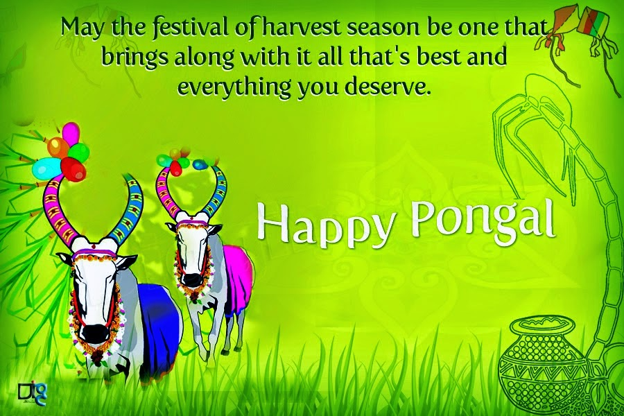 Happy pongal messages of 2018 greetings and wishes techicy happy pongal messages 2016 m4hsunfo