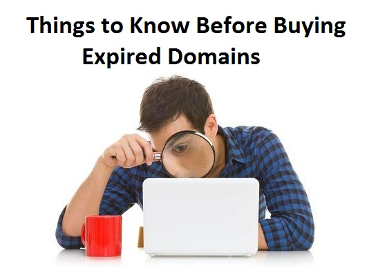 Before Buying Expired Domains