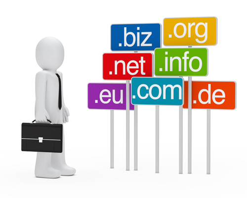 Picking a Domain Name