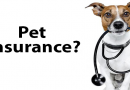 About Pet Insurance