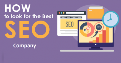 Look For In an SEO Company