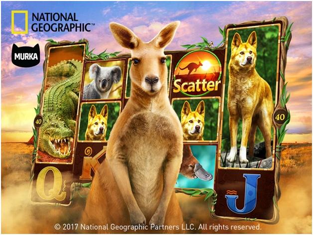 Nat Geo Wild Slots via FB