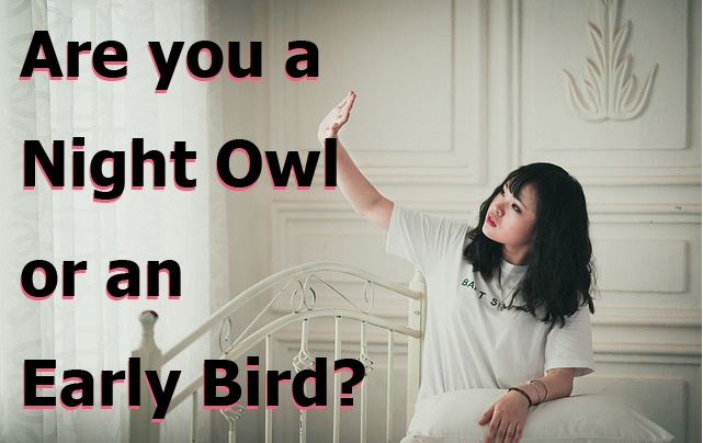Differences Between Early Birds and Night Owls