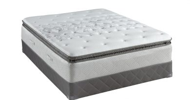 Growing Mattress Industry