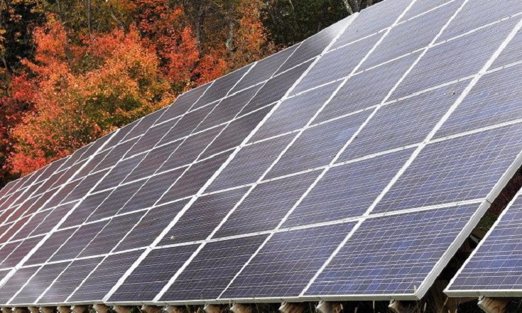 Low Cost Chinese Solar Imports Smack Local Manufacturers