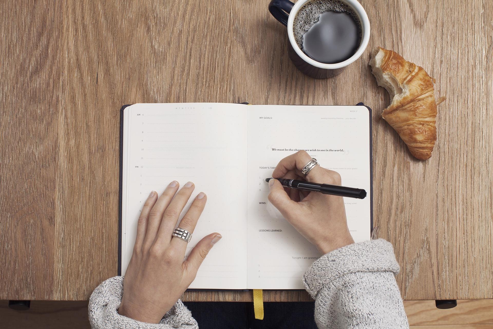 Basics Of Essay Writing – Thesis