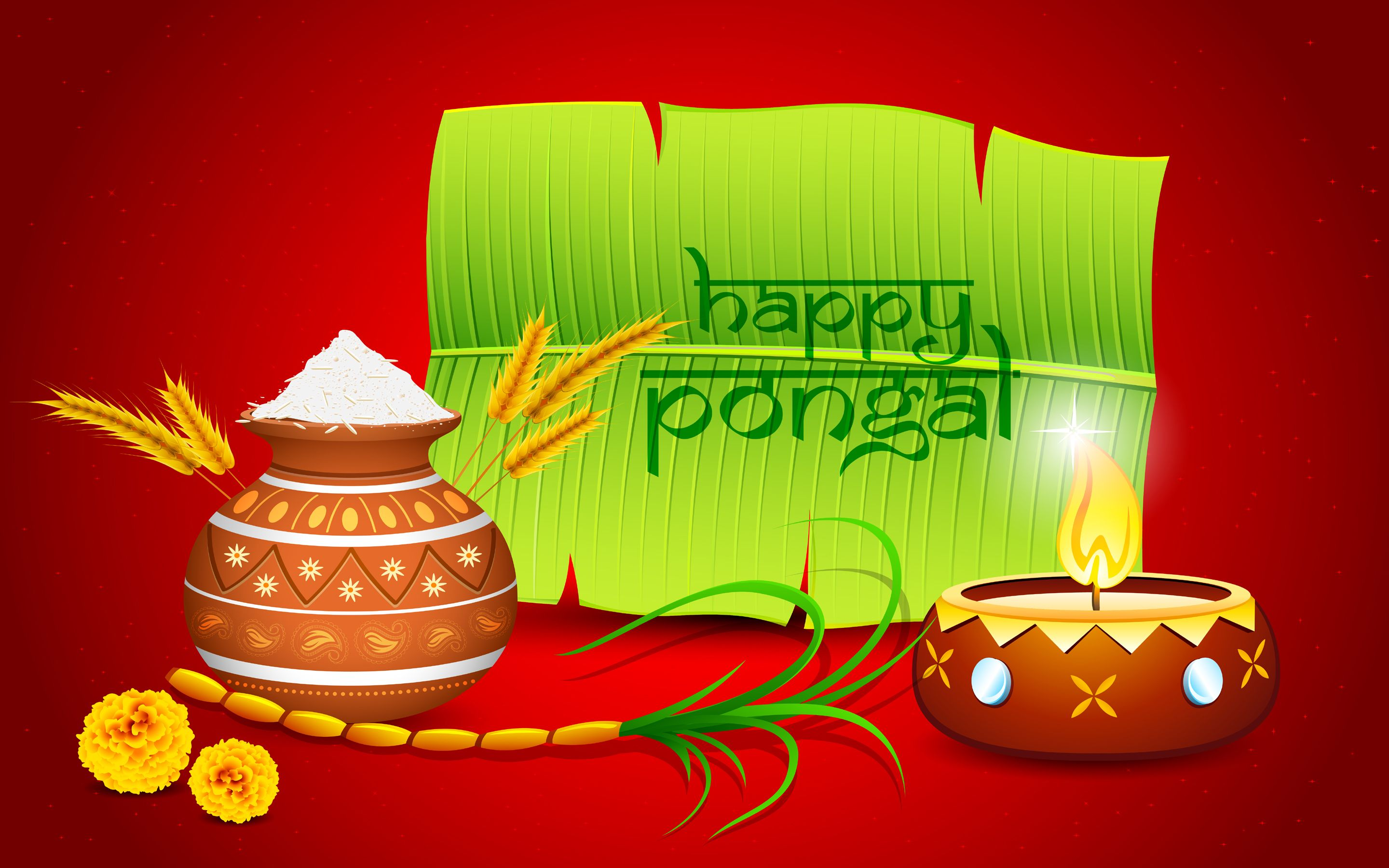Happy Pongal Wallpapers Pictures Images - Free Download1