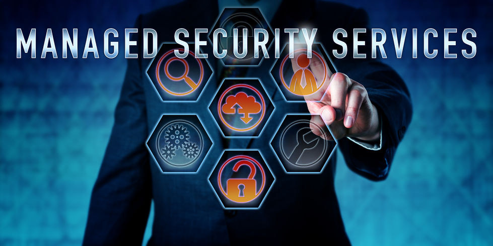 Managed Security Services for Websites