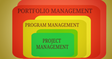 Project Portfolio Management Vs. Project Management