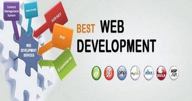 Web Development Can Help You Succeed