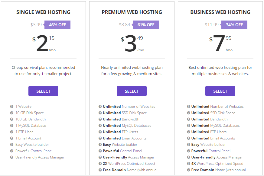 The Website Hosting Service Provider