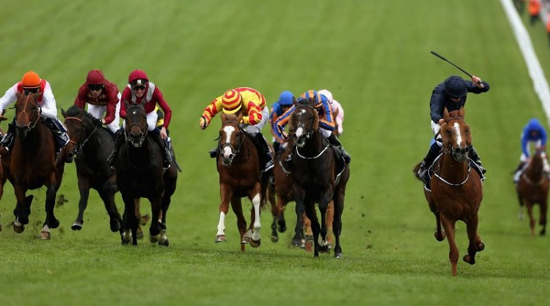 Influence Of Technology In The Horse Racing Industry