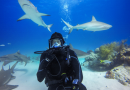 Underwater Time Lapse Photography