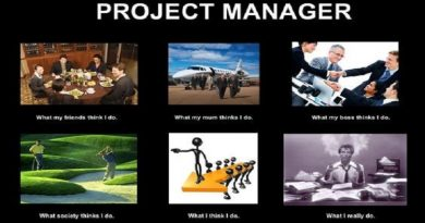 What Do Project Managers Do