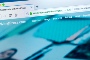 5 Keys For Optimizing Your Wordpress Site