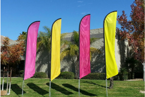 Benefits Associated with Feather Flags