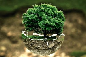 Best Energy Efficient ACs For A Greener Planet