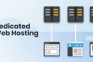 Do You Really Know Why You're In Dire Need Of A Dedicated Web Hosting Provider