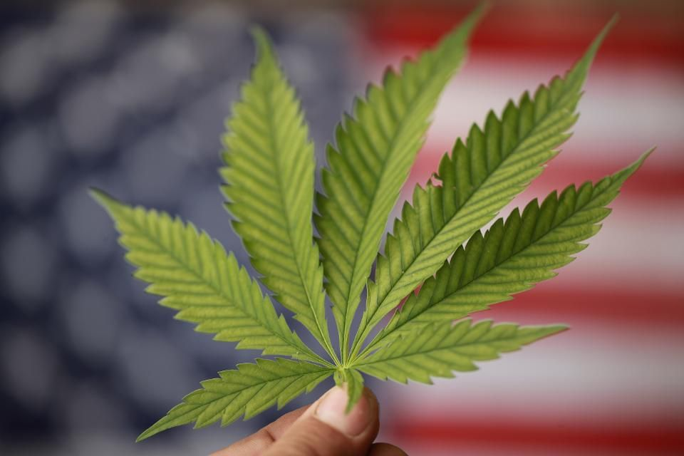 Advance The Cannabis Industry