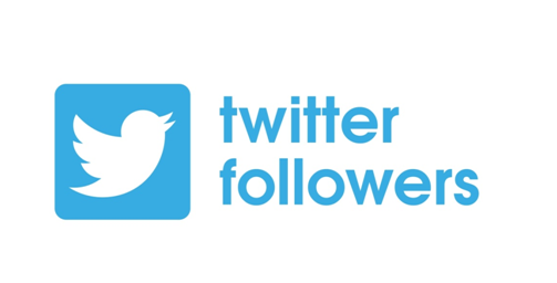 How To Get Followers On Twitter Fast