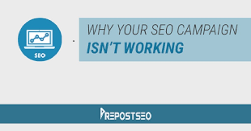 SEO Campaign is Not Working