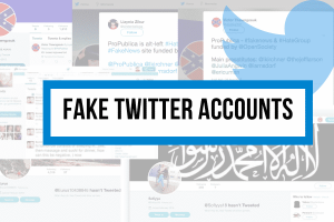 Why Do You Need Real Twitter Followers and Avoid Fake Followers