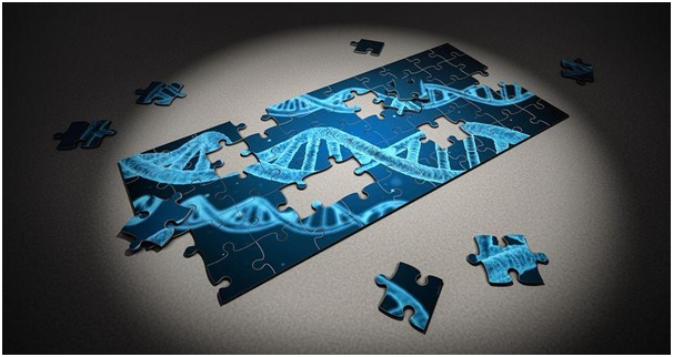 Finding Family with DNA Testing_2