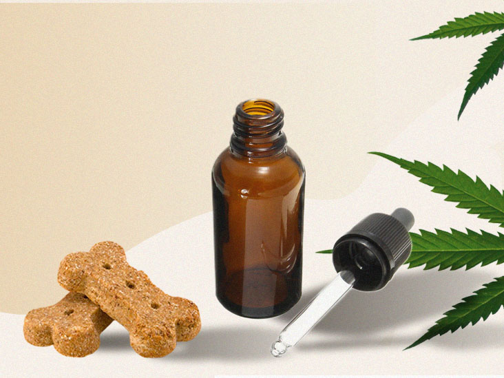 Science Behind CBD Oil Pet Products