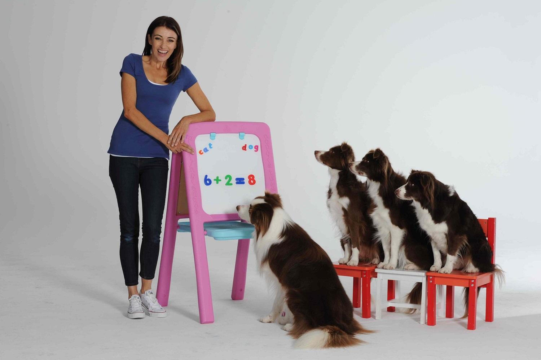 6 Items to Make Your Dog Smarter