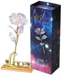 Galaxy Rose