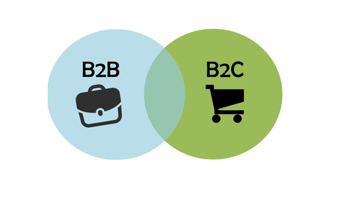 B2B and B2C Businesses
