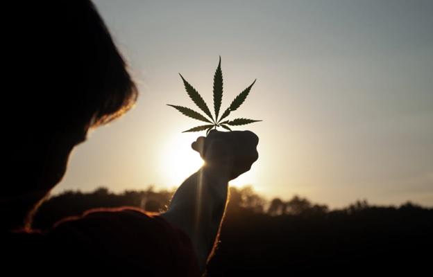 Cannabis and Its Links to Spirituality