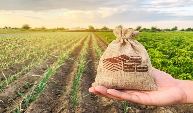 Generating More Profit from Your Farm Business