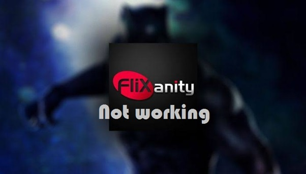 The issue in Flixanity