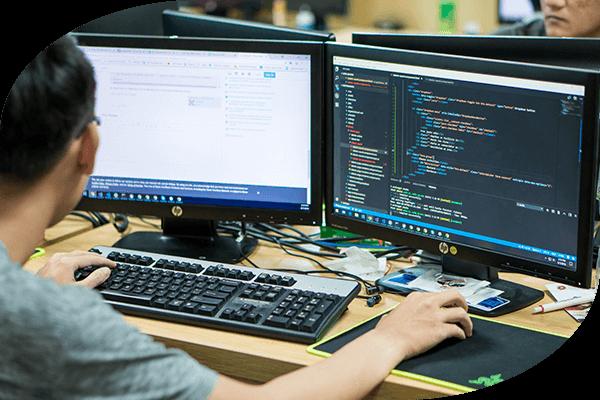 Customized Software Development Services