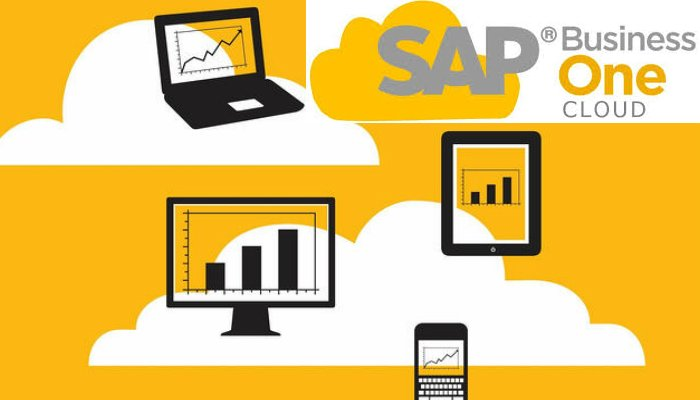 SAP Business One On Cloud